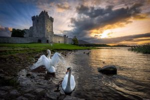 Destination Killarney - Ross Castle
