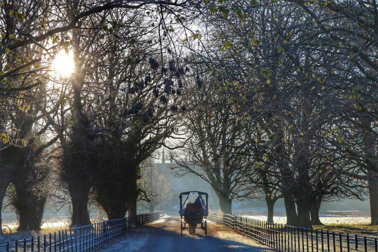 Destination Killarney - Jaunting Cars