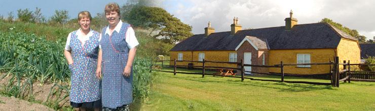 Destination Killarney - Header Farms