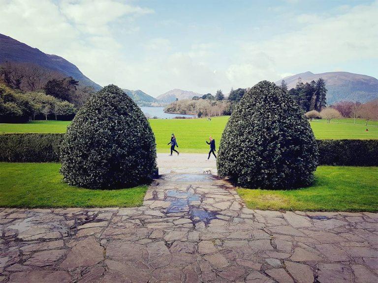 Destination Killarney - Muckross House Trees