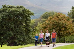 national park walk - Destination Killarney