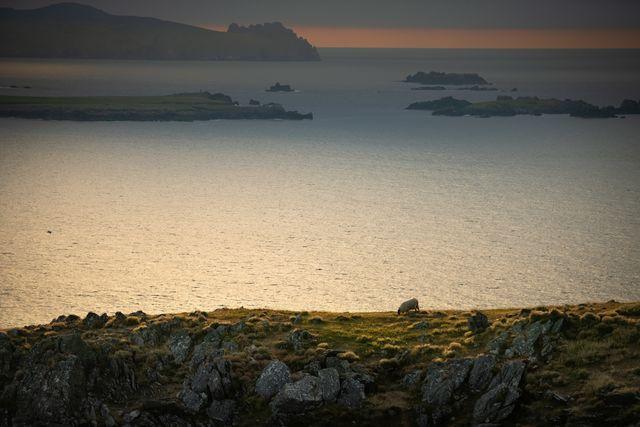 Blasket Island Dingle